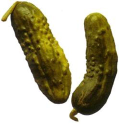 pickles8162901_std