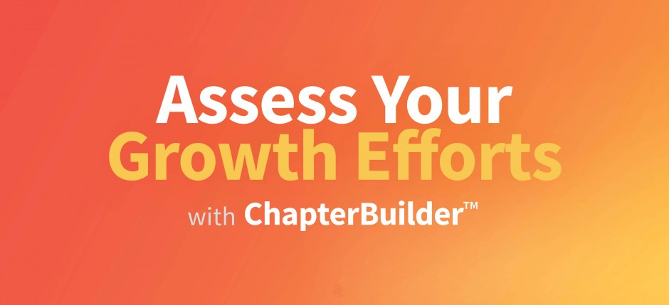 Assess Your Growth Efforts